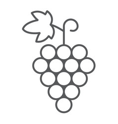 grapes thin line icon fruit and vitamin vector image