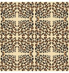 leopard print pattern skin vector image