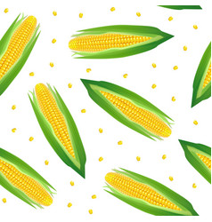 realistic detailed 3d corncobs with yellow corns vector image