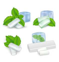 Realistic mint chewing gum icon set vector