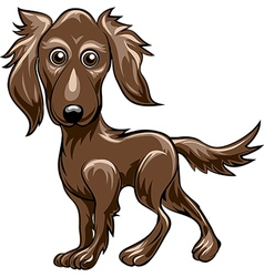 Retriever vector