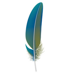 trendy feather icon realistic style vector image