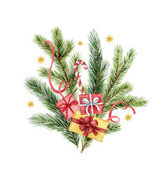 watercolor christmas bouquet with fir vector image