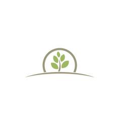 plant organic botany farm logo vector image