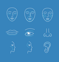 plastic surgery face icons thin line set vector image