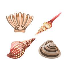 seashell element for decoration aquariums vector image vector image