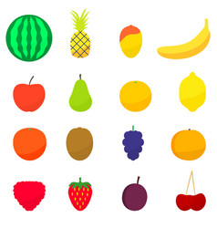 a set flat colorful fruits vector image