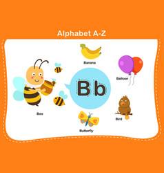 Alphabet letter b vector
