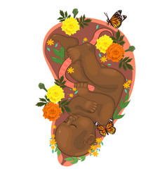 baby in womb with flowers graphics vector image