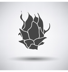 Dragon fruit icon on gray background vector image