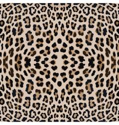 Leopard print pattern skin vector