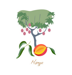 Mango fetus with leafs food ingredient harvest vector