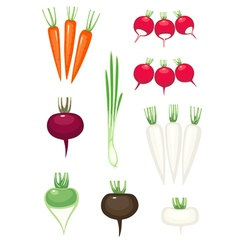 Set of vegetables vector
