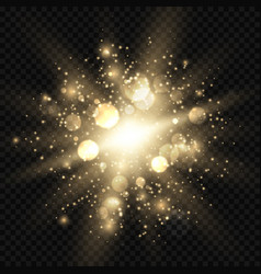 star burst with sparkles and bokeh golden light vector image
