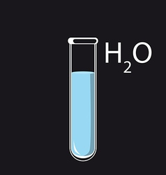 test tube H2O vector image