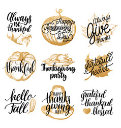 Thanksgiving lettering with vector