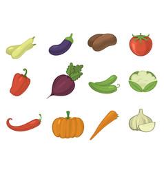vegetables healthy tomato carrot potato vector image
