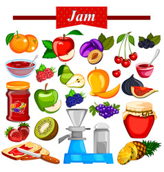 different variety of fruit jam and jelly vector image vector image