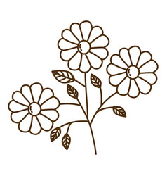 Brown silhouette with set of daisy flowers with vector