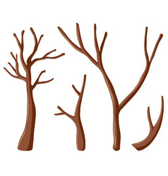 different shapes of branches vector image