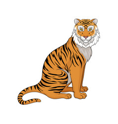 powerful tiger sitting isolated on white vector image