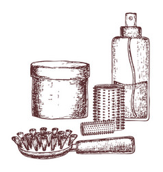 remedies of hair care vector image