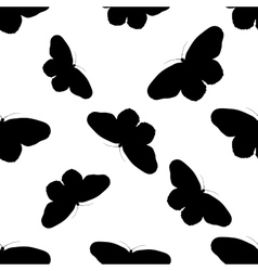 Seamless pattern with butterfly Idea Leuconoe vector