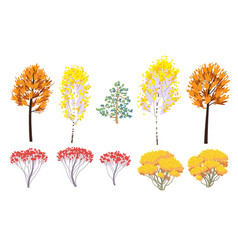 simple autumn forest trees and bushes vector image