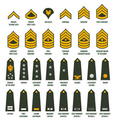 Usa army enlisted ranks chevrons with insignia vector