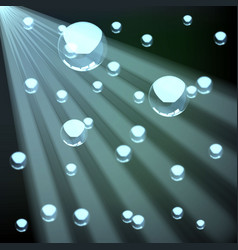 realistic water bubbles image vector image