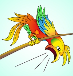 bright parrot yells about news which vector image