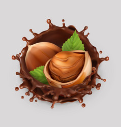 hazelnut and chocolate splash realistic 3d icon vector image vector image