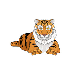 Adult tiger laying isolated on white background vector
