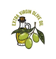 extra virgin olive oil olive branch vector image