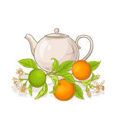 orange tea vector image