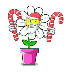 Santa with candy daisy flower mascot cartoon vector