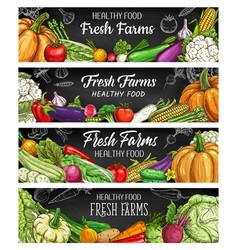 vegetables farm food chalk sketch banners vector image