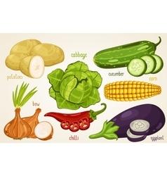 Vegetables mix Organic food farm food vector image