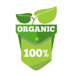 Organic natural eco label with leaves vector image vector image
