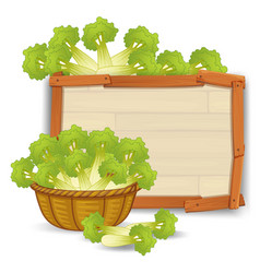 A basket of celery on wooden banner vector