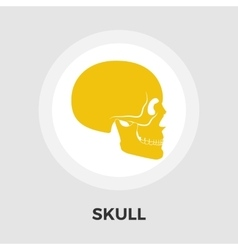 Anotomy skull flat icon vector image