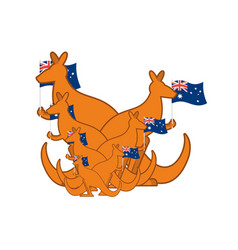Australia day emblem holiday kangaroos and vector