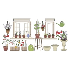 Flower pots with herbs and vegetables Plants vector