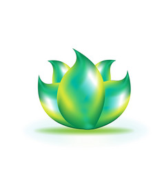 Lotus shiny leaf icon vector