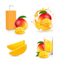 mango juice splash mango fruit and drink package vector image