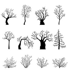 set silhouettes bare trees and bushes vector image