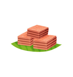 three pieces of indonesian layer cake kek lapis on vector image