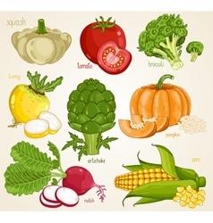 Vegetables mix Organic food farm food vector