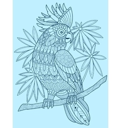 Cockatoo parrot coloring book for adults vector