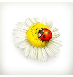 Ladybug and chamomile vector image